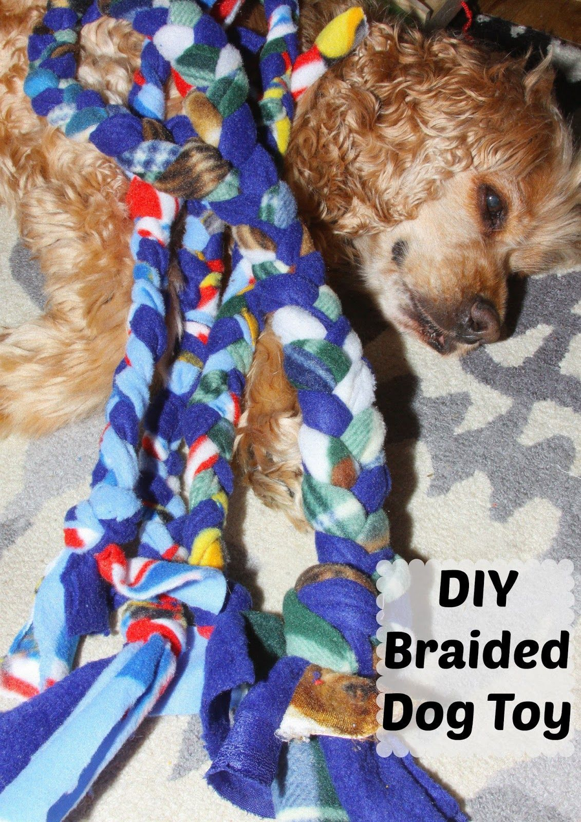Diy Braided Fleece Dog Toys Cost Under 1 To Make And Are Great