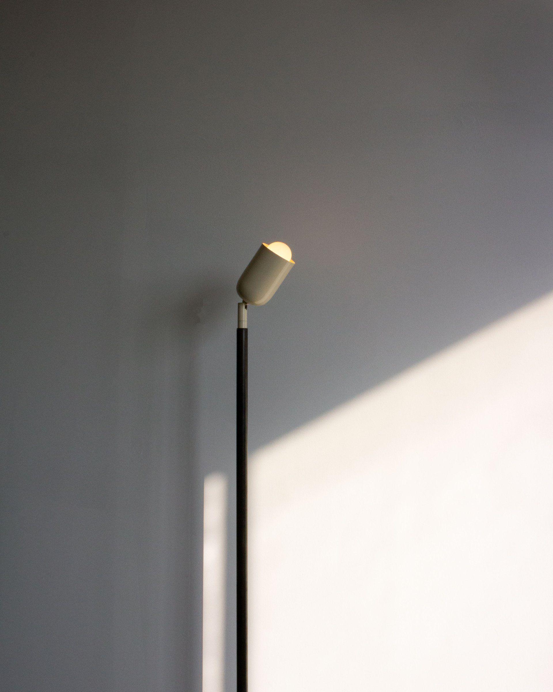 Spot Floor Lamp Lamp Floor Lamp Flooring
