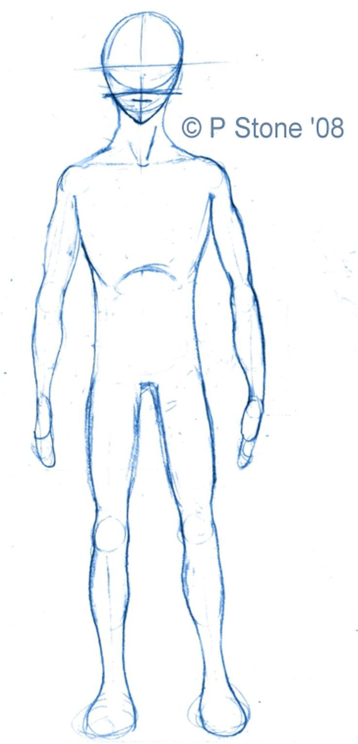 How To Draw A Basic Manga Character For Poses Manga Drawing Human Body Drawing Manga Characters