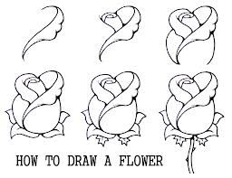 Pin By Julia Howard On Art Nature Drawing Flower Drawing Roses Drawing Drawing For Beginners