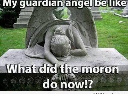 1 My Guardian Angel Be Like Meme Things That Make Me Laugh Funny