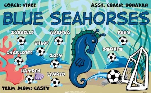 Seahorses-Blue-46533  digitally printed vinyl soccer sports team banner. Made in the USA and shipped fast by BannersUSA. www.bannersusa.com