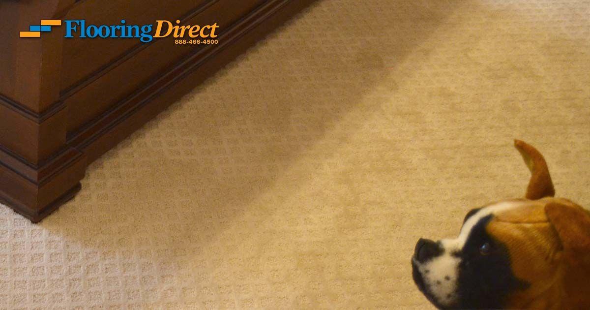 Carpet And Flooring In Dfw