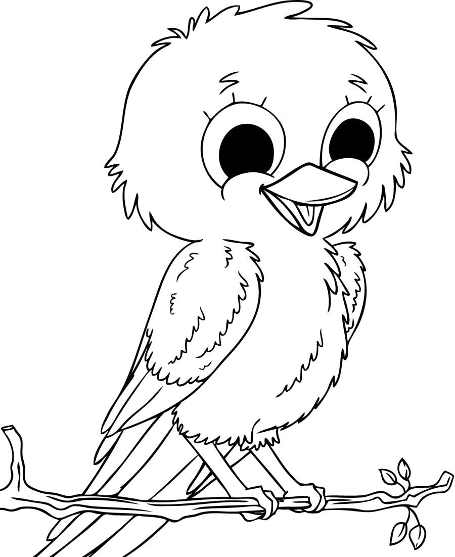 baby sparrow birds coloring pages - Bird Coloring Pages