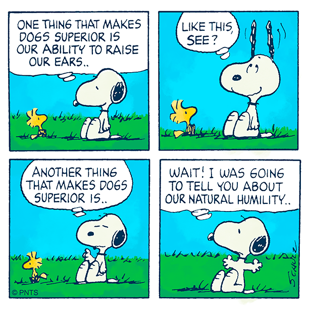 Pin by Vincent Pisano on Me (With images)   Snoopy love