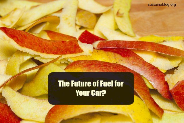 Running Your Car On Apple Peels The Sodium Ion Battery That