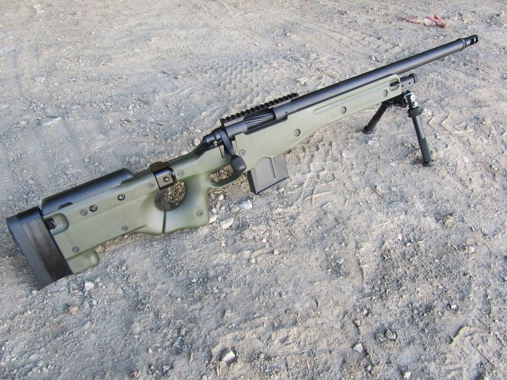 Short Action Customs Remington 700 with Accuracy International