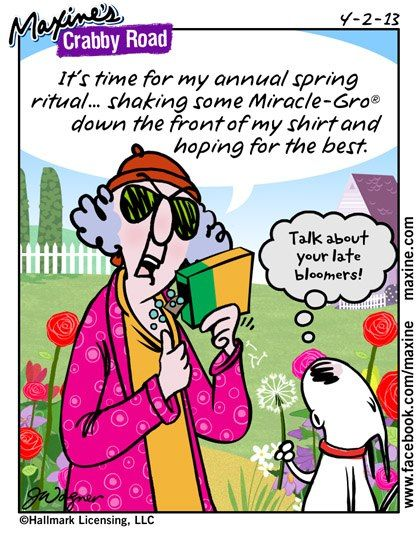annual spring ritual: Miracle-Gro ~ LMAO! | Maxine comic for
