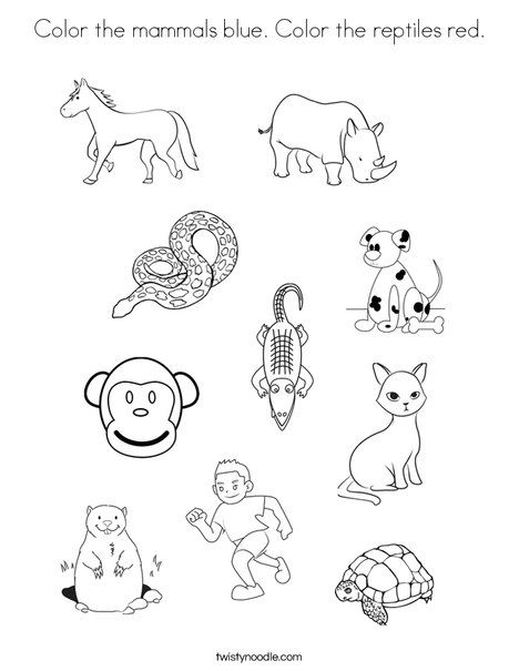 Color the mammals blue Color the reptiles red Coloring Page