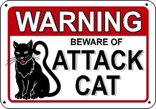 Beware Of Attack Cat Warning Sign Cats Signs Gag Gift Guard Feline