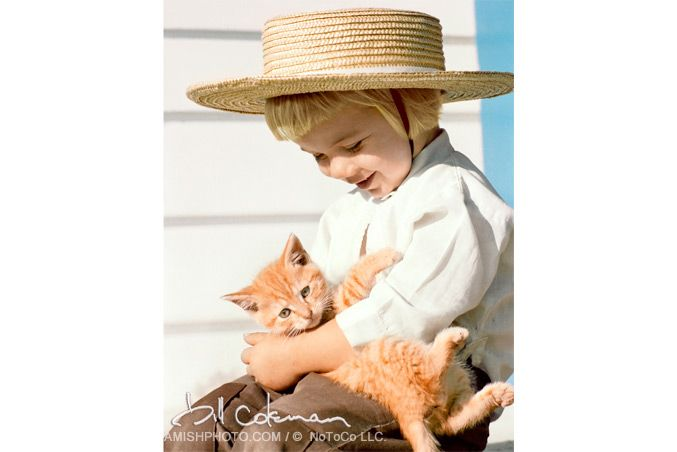 """""""Feline friend""""- a young amish boy holds a striped cat. [Photo by Bill Coleman; 1925-2014]"""