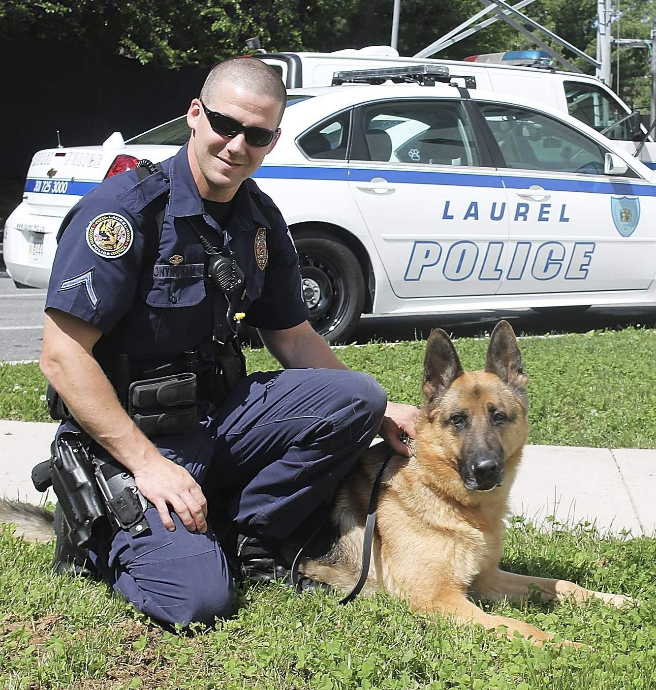 Laurel Police, Maryland. Police dogs, Military working