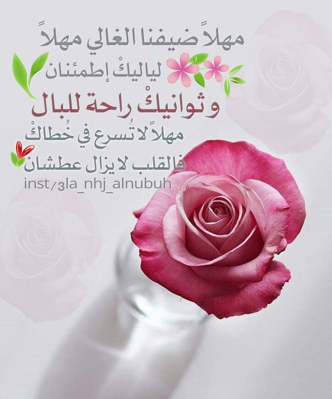 مهلا ضيفنا الغالي مهلا لياليك إطمئنان و ثوانيك راحة للبال مهلا لا ت سرع في خ طاك فالقلب لا يزال عطشان Ramadan Rose Flowers