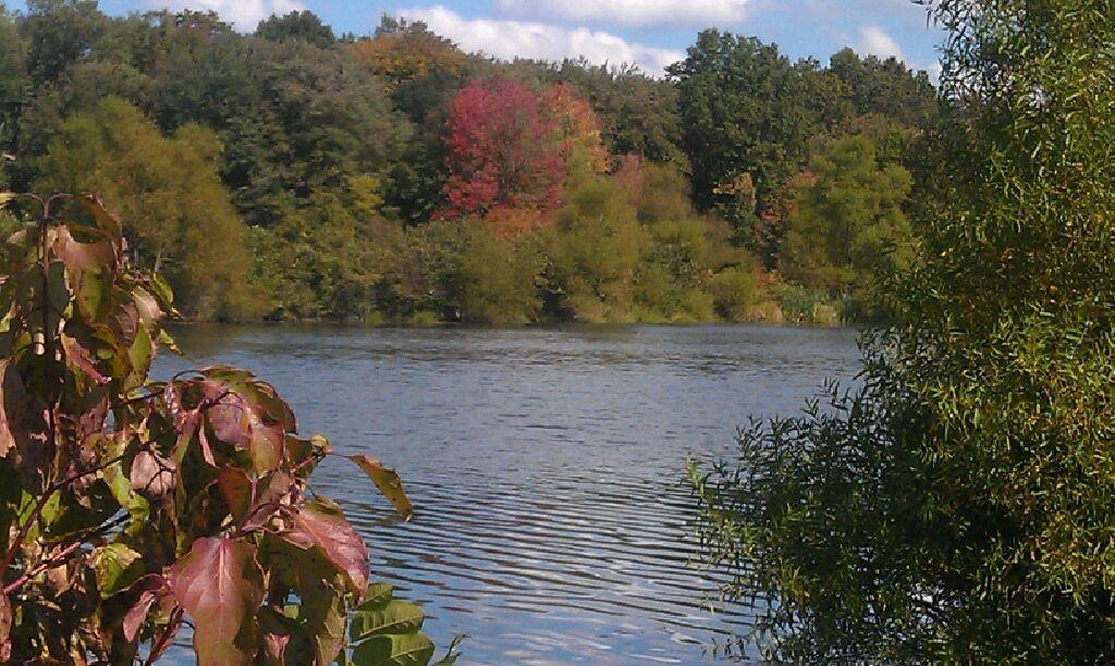 Lake Caroline Fairless Hills Pa Places Places Ive