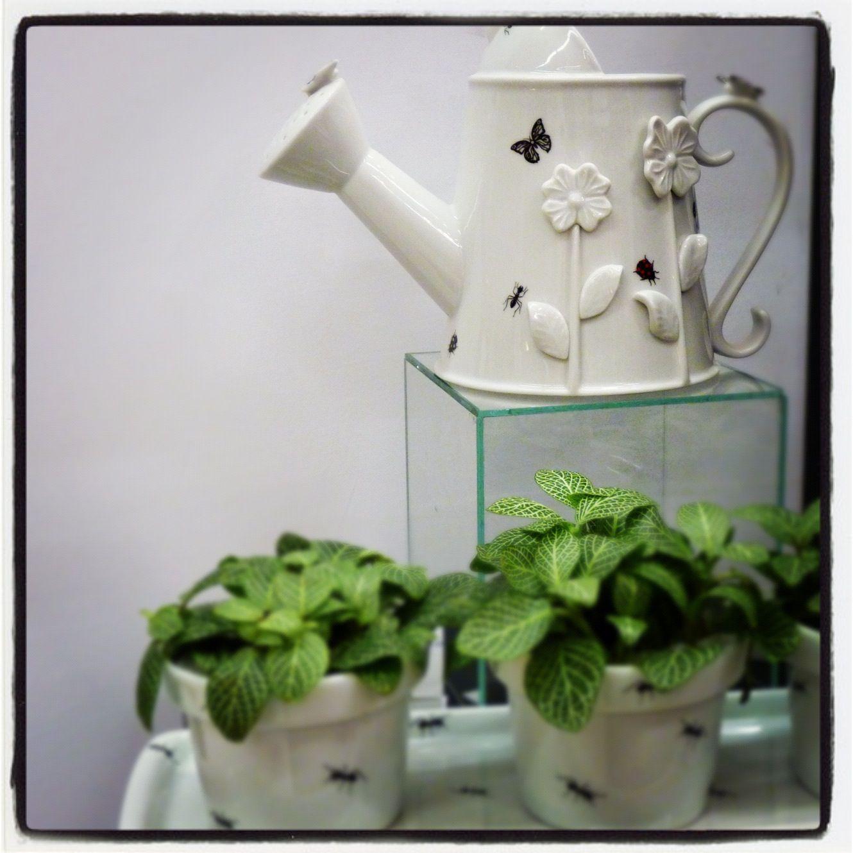 Da Greghi Design, a porcelana em formato de regador é uma graça!
