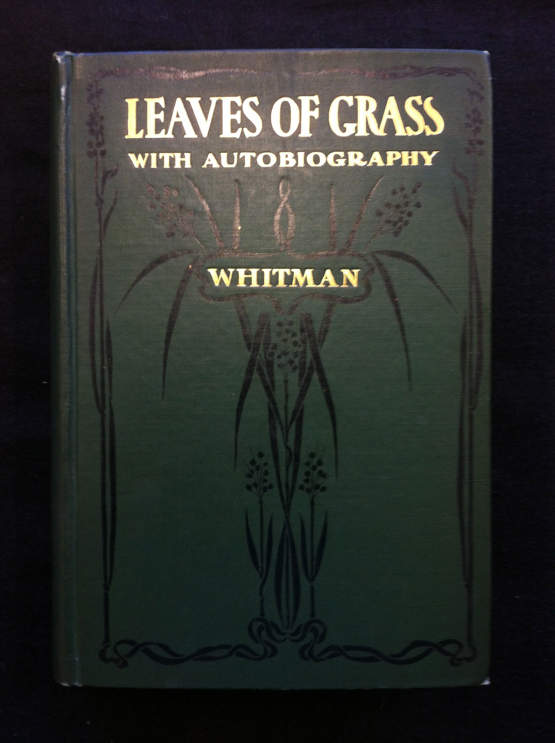a biography of the poet walt whitman Walter walt whitman (may 31, 1819 – march 26, 1892) was an american poet, essayist and journalist he was an important american poet of the 19th century.