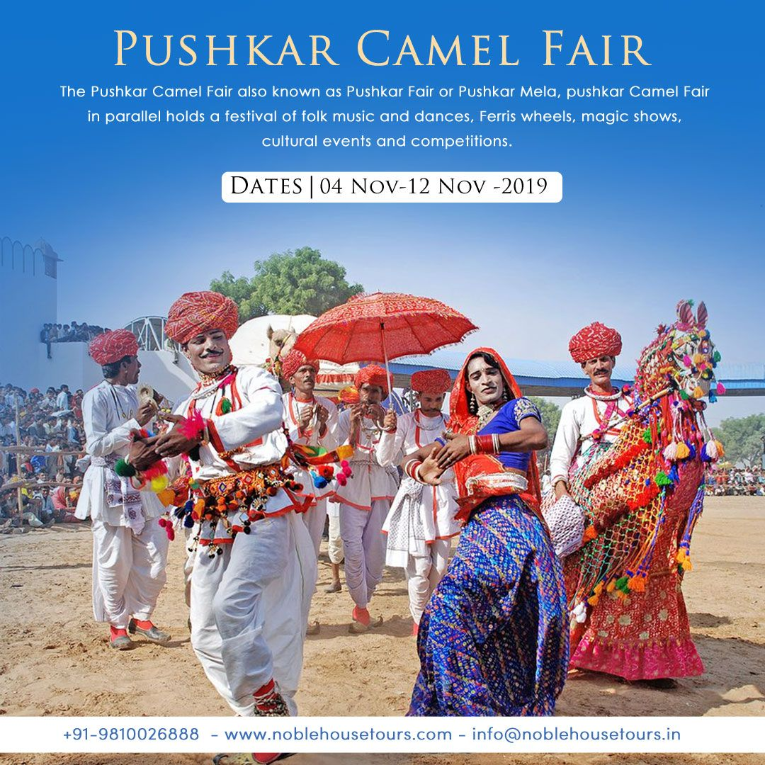 Pin on Pushkar camel Fair 2019