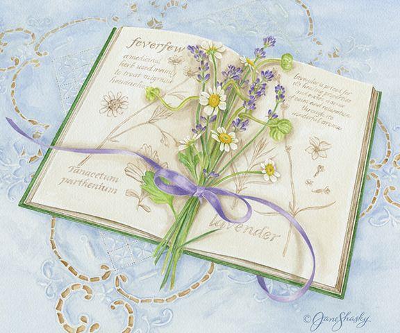 JS-HG360 herb book