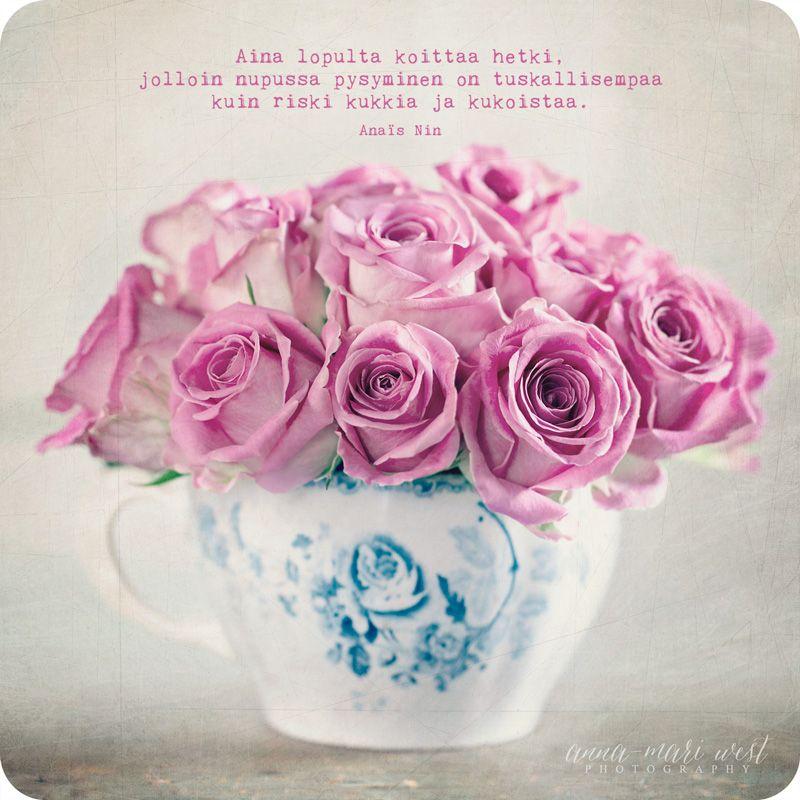 Naistenpäivä Kukka