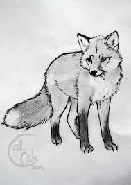 Resultat De Recherche D Images Pour Black Fox Tattoo Realistic Fox Sketch Animal Art Fox Art