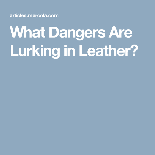 What Dangers Are Lurking in Leather?
