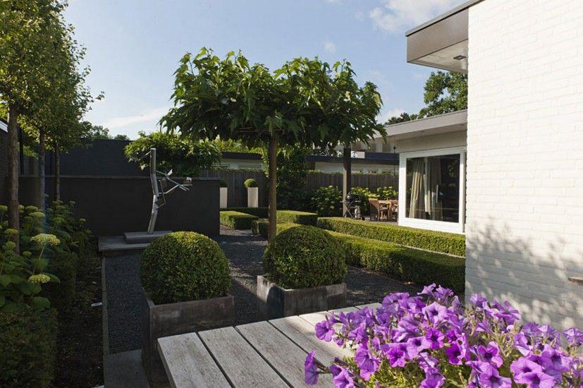 exclusieve kleine tuin met strak tuinontwerp garden