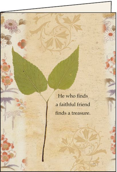 Friendship plain greeting cards words that inspire pinterest friendship plain greeting cards m4hsunfo