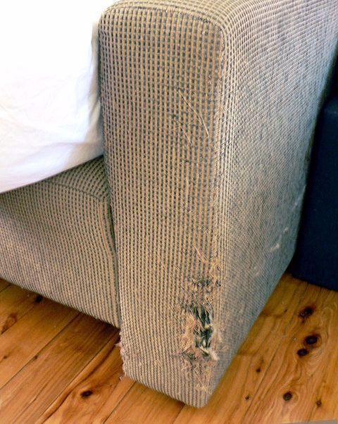 pin by santa fe ranch western furniture on furniture repair tips rh pinterest com cat scratching sofa protectors keep cat from scratching sofa