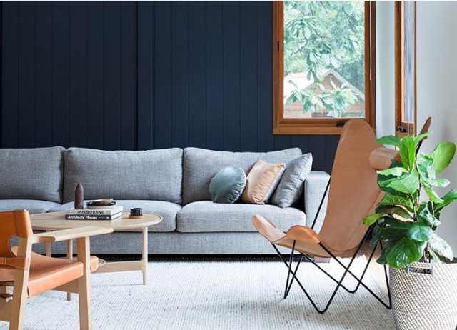 Feature Wall Colour Dulux Oolong In 2019 Room Wall