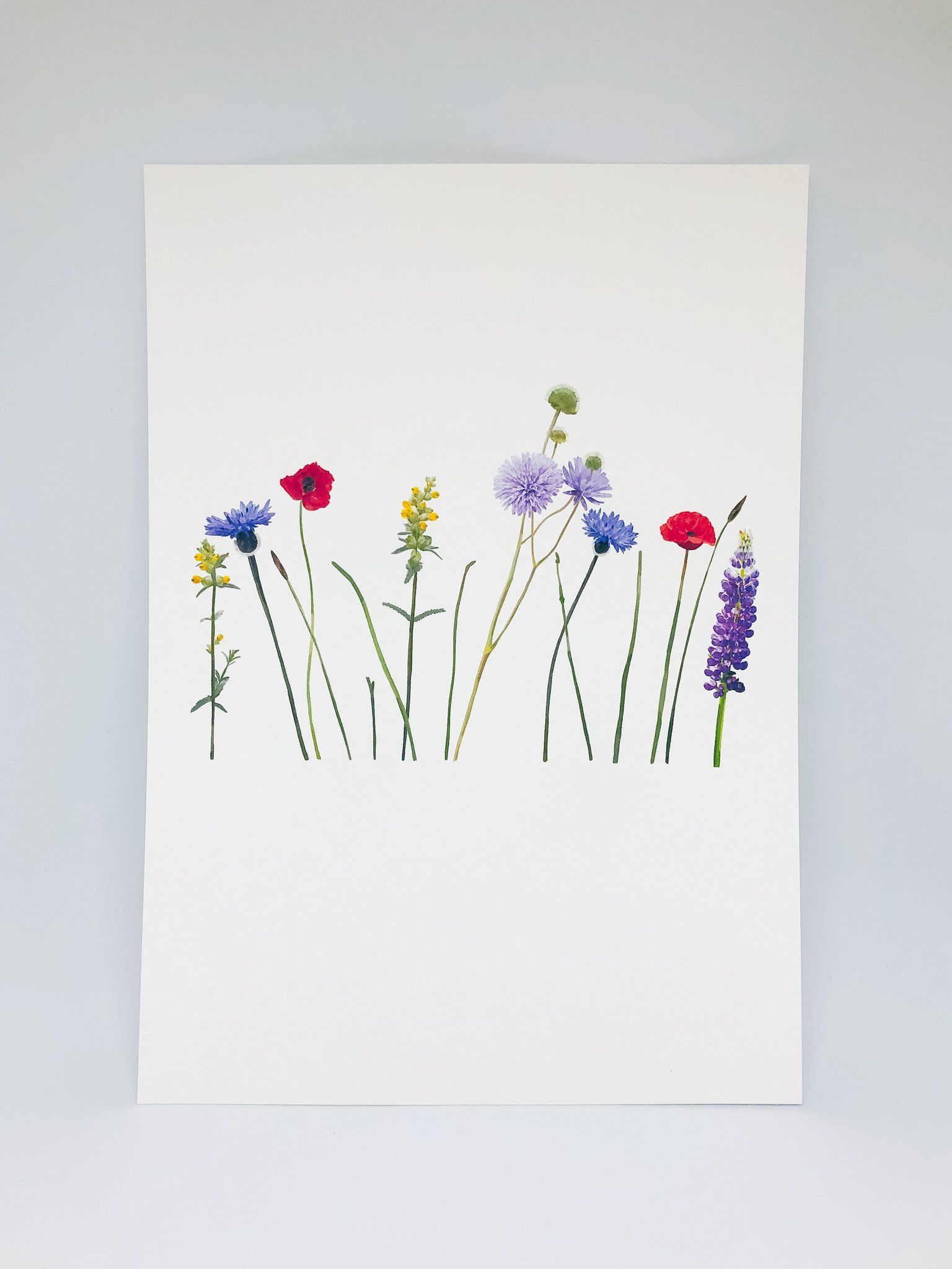 Spring Flowers Print Floral illustrations, Floral wall
