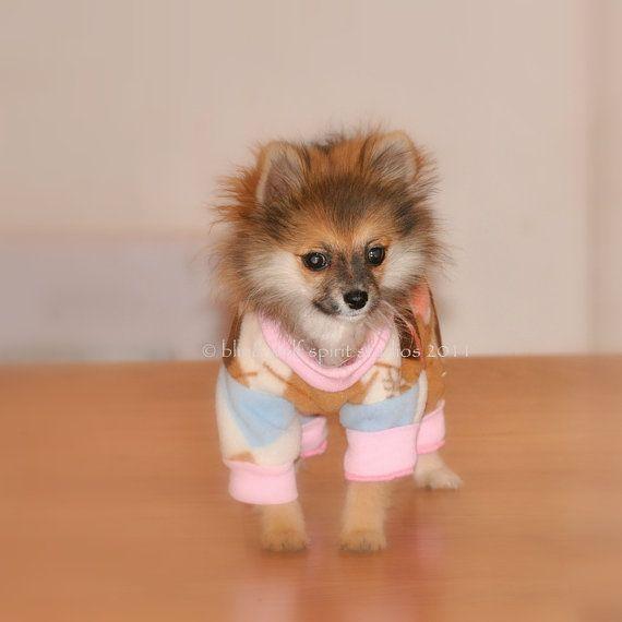 Pin By Jennifer Thompson On Animals Dog Pajamas Dogs Puppies In Pajamas