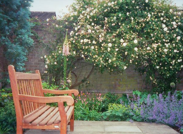 Low Maintenance Cottage Garden - Google Search | For The Garden