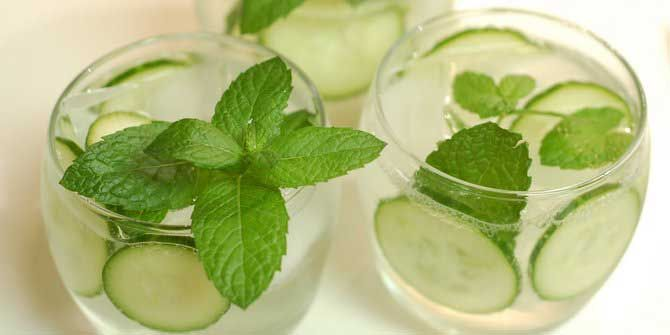 Minuman Segar Penurun Kolesterol Resep Minuman Program Diet Diet