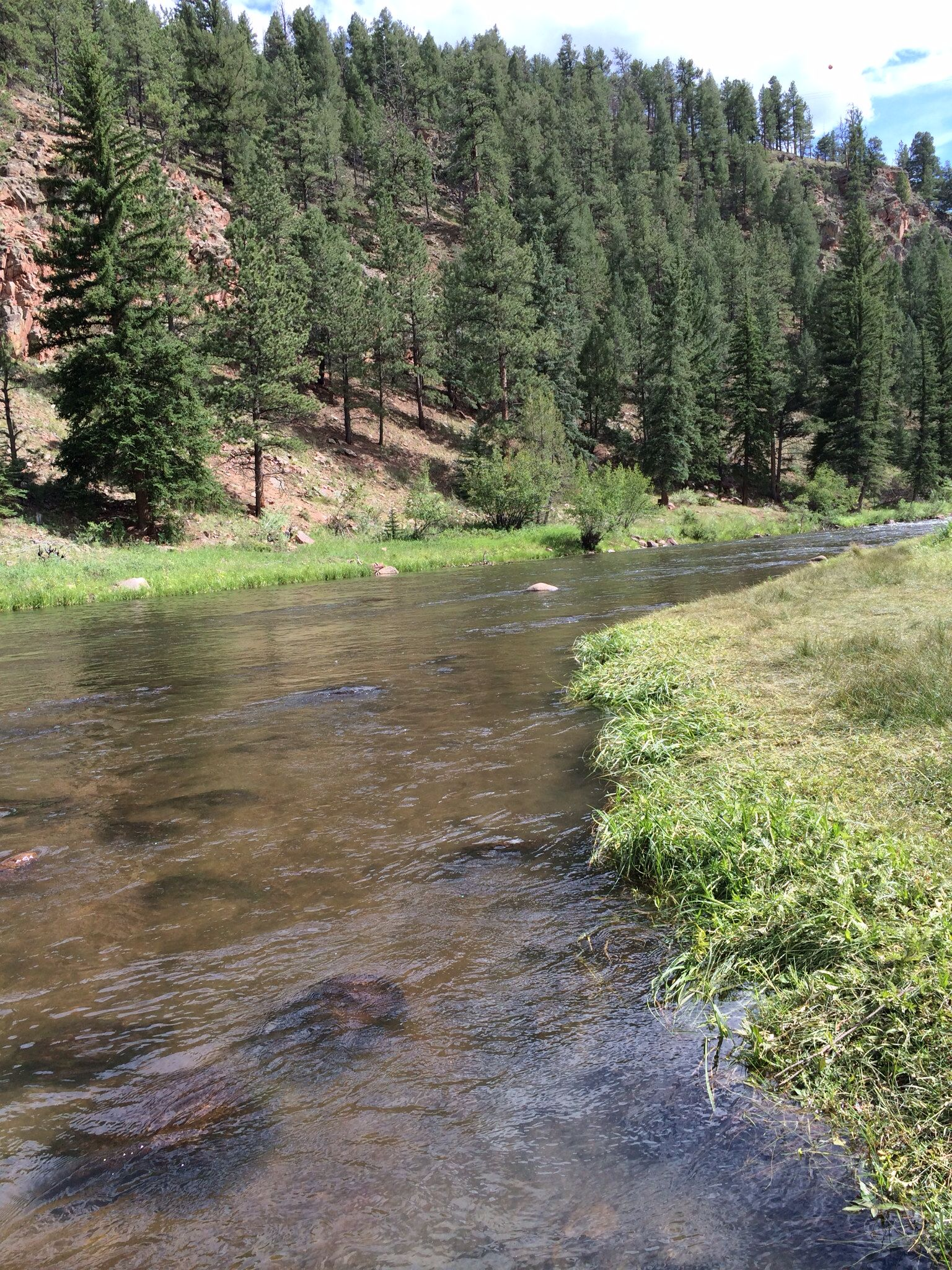 Gorgeous Stream In Florissant Co Laced With Flakes Of Gold Running Thru The Water And Settling On The Rock Bed Fishing Places Fishing Trip Fishing Adventure