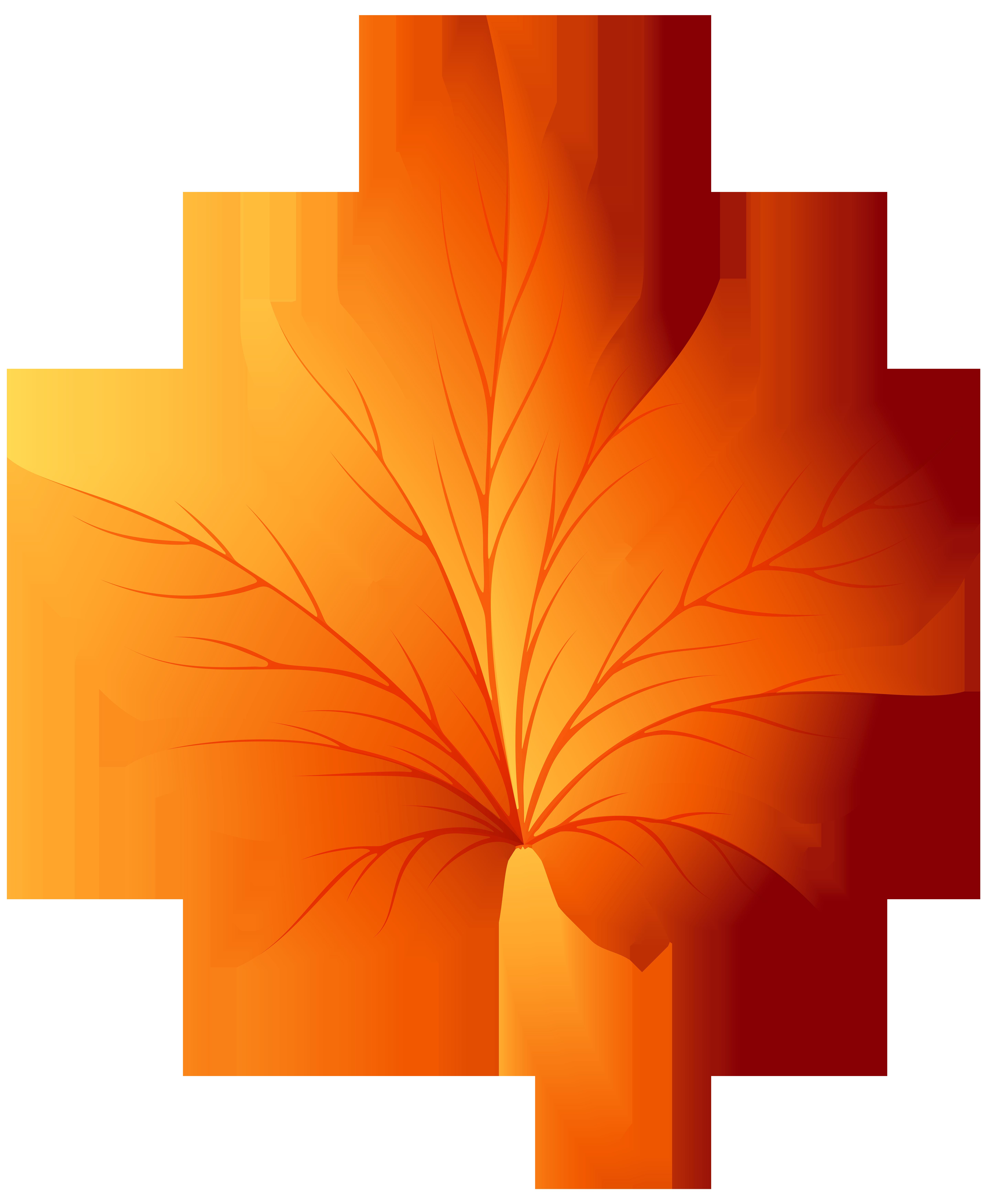 autumn leaf transparent