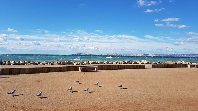 Quand t'attends que le Mistral tombe. #Marseille