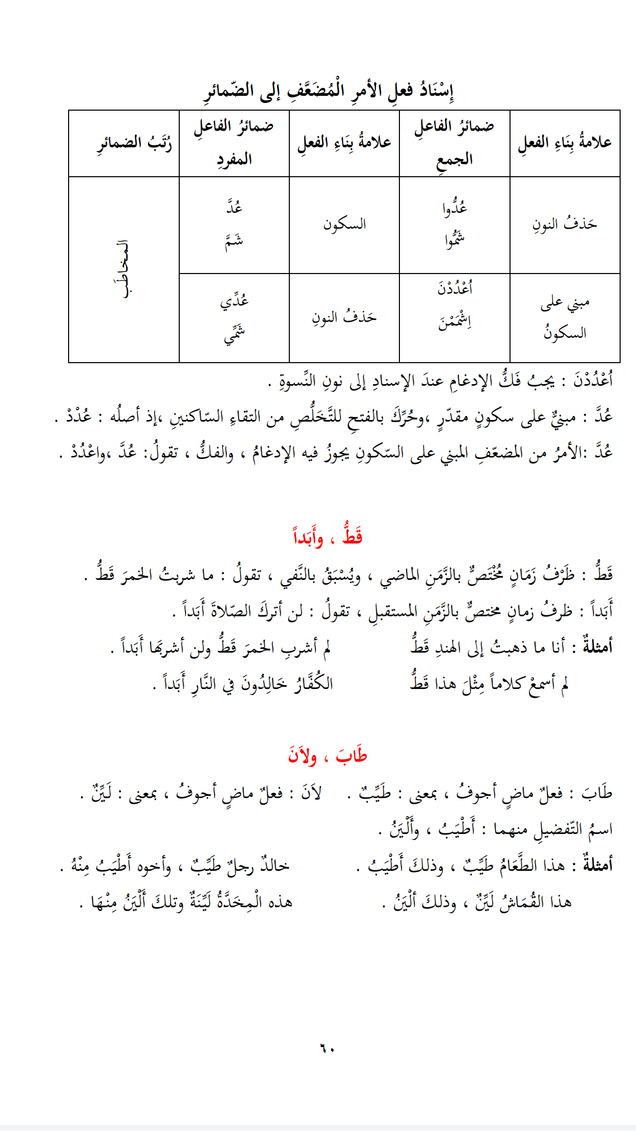 Cours N 29 Suite 2 Tome 2 Learn Arabic Language Arabic Language Arabic Lessons