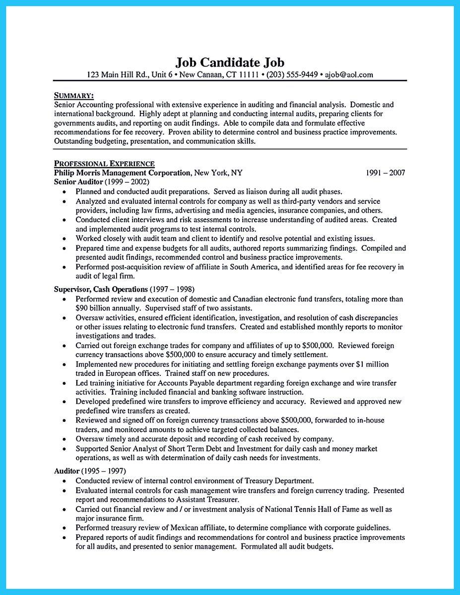 15+ Internal auditor resume description Resume Examples