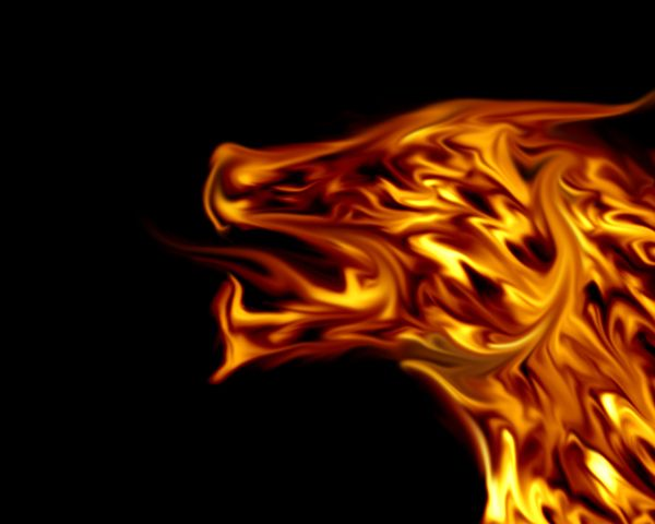 Lovely Dragon Pictures Fire Dragon Fire Art