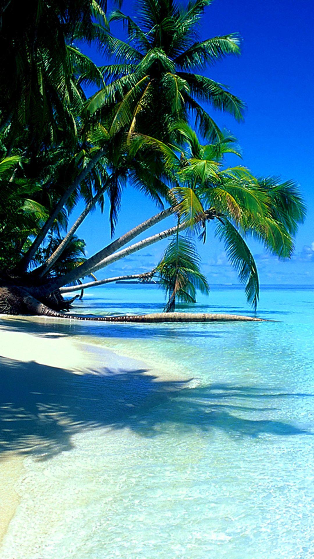 Phone Wallpaper Landscape Tropical Sea Paradise In 2020 Tropical Beaches Beach Wallpaper Beautiful Beaches
