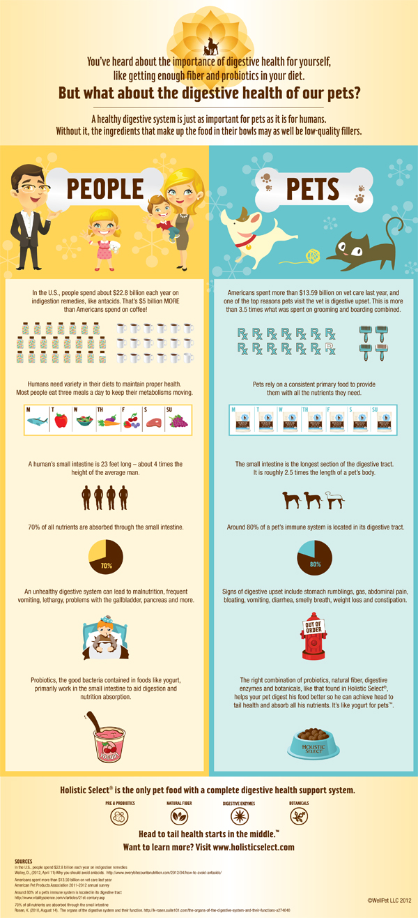 Digestive health is important for you and your pets [Infographic]