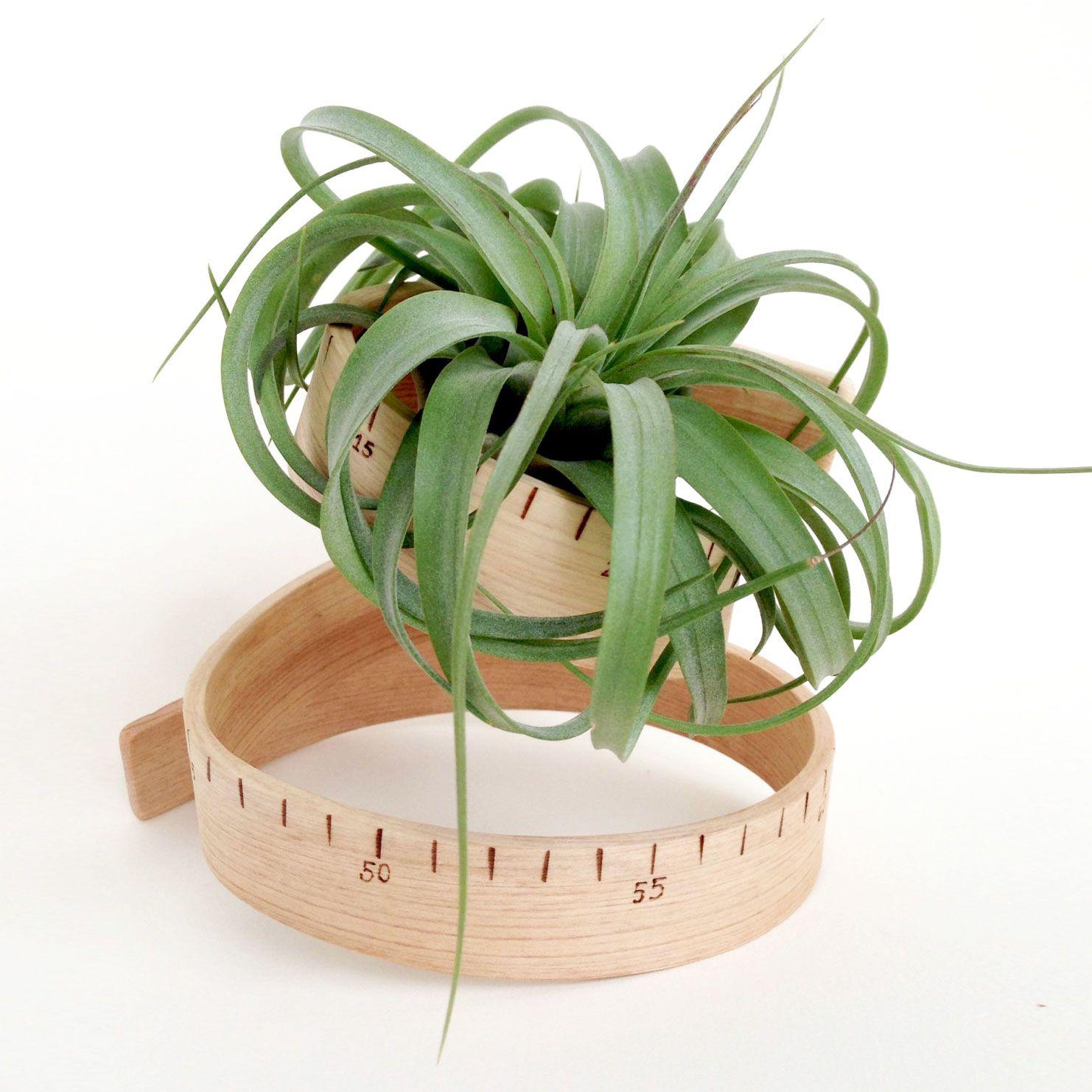 DIY inspiration-Bent Ruler Plant Bed