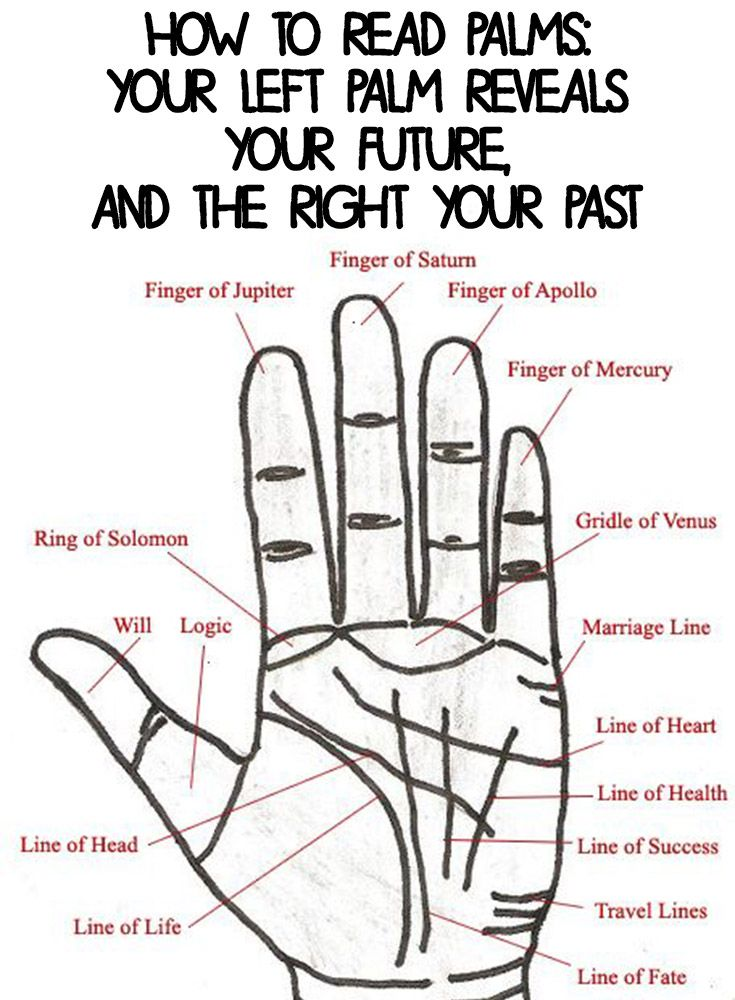 How To Read Palms Your Left Palm Reveals Your Future And The