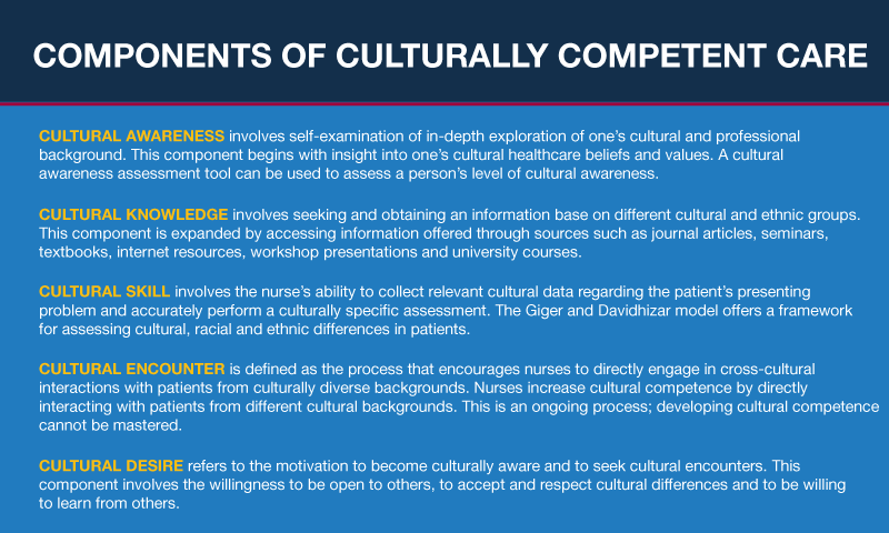 A Guide to Culturally Competent Nursing Care | Nursing ...