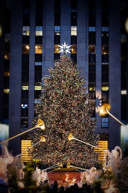 Christmas Tree, Rockefeller Center, NYC. This is on my bucket list. .. Tyler promised me we would go to NYC for our anniversary down the road so we could see all the Christmas decorations!!