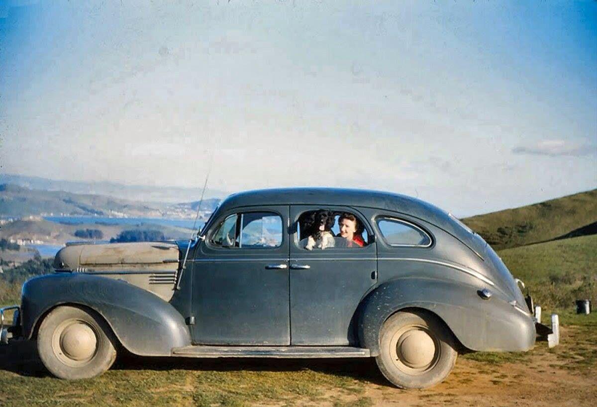 Proud vintage car owner & her Dog | Vintage & Old Car photos ...