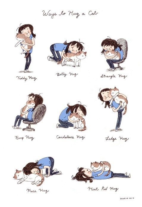 Ways to Hug a Cat