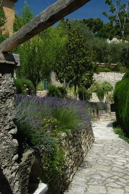 Paisaje mediterráneo por Atelier Nelumbo Diseño de Jardines