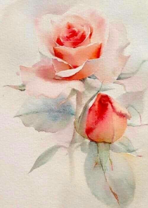 Art Rose Watercolor Painting Floral Watercolor Watercolor