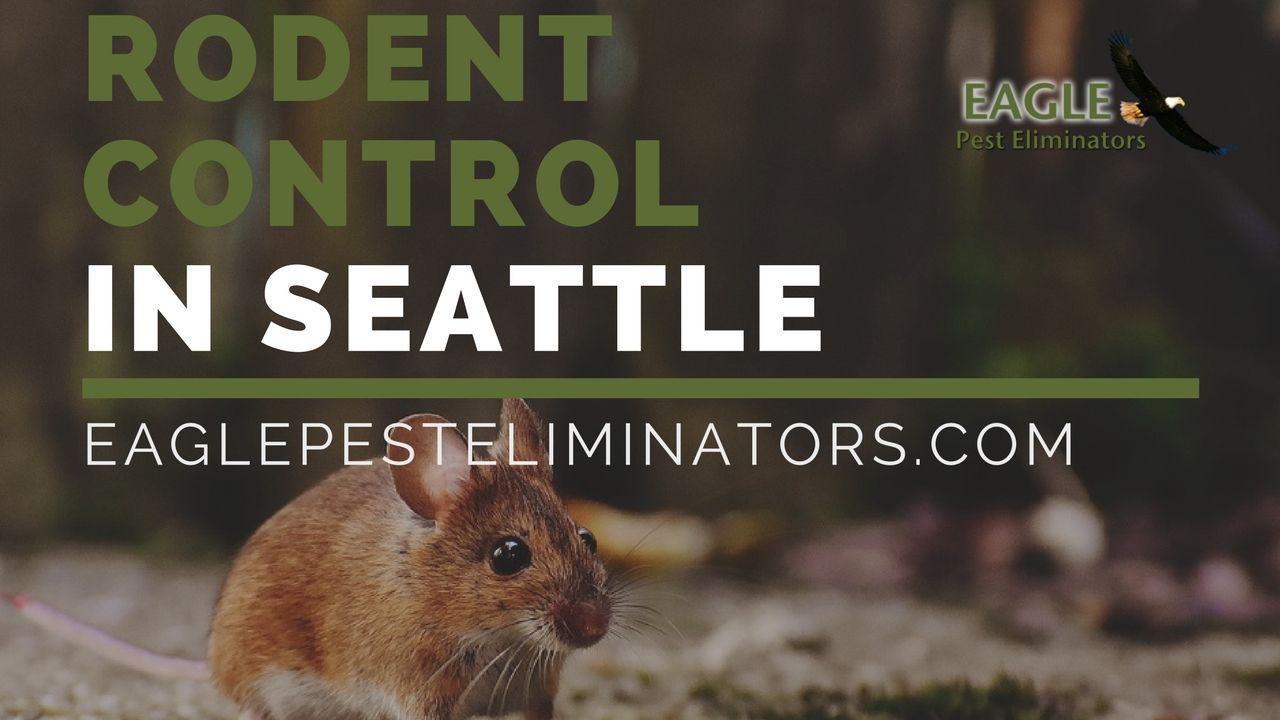 Shared By Eagle Pest Eliminators Seattle Everett Pest Control Company Www Eaglepesteliminators Com Summer Pests By Eagle Summer Pests Pest Control Pests